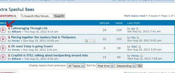 Bump temat phpBB hosting