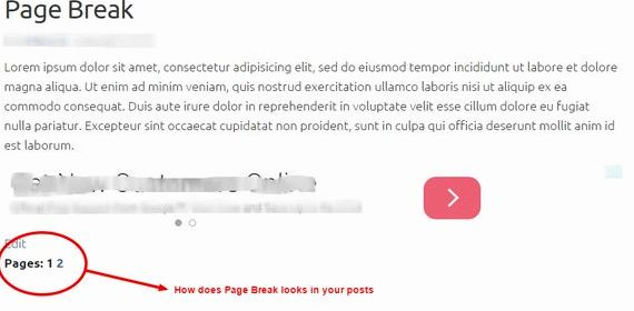 Insert page break wordpress hosting to describe the media