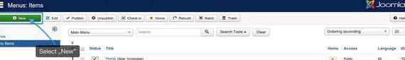 Poz 101 joomla hosting
