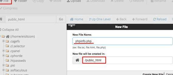 Phpinfo Seite Wordpress Hosting