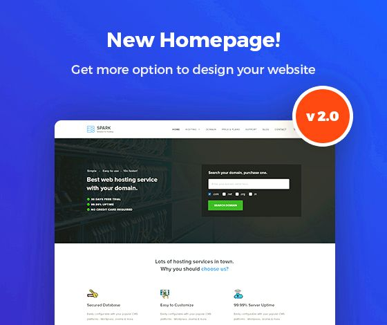 Theme settings page wordpress hosting