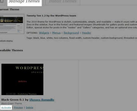 Webhostinghub instalar wordpress tema