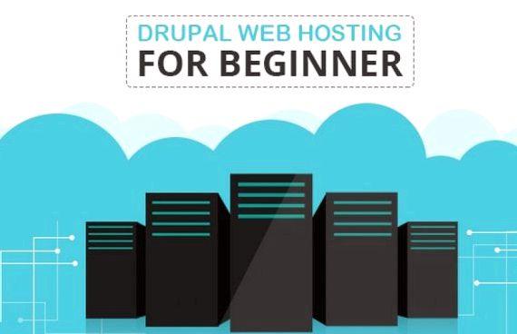 드루팔에 대한 웹 사이트 호스팅 서버 요구 사항