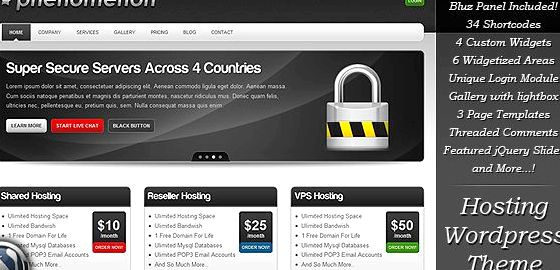Wordpress Web-Hosting-freies Thema auf, was sie tun